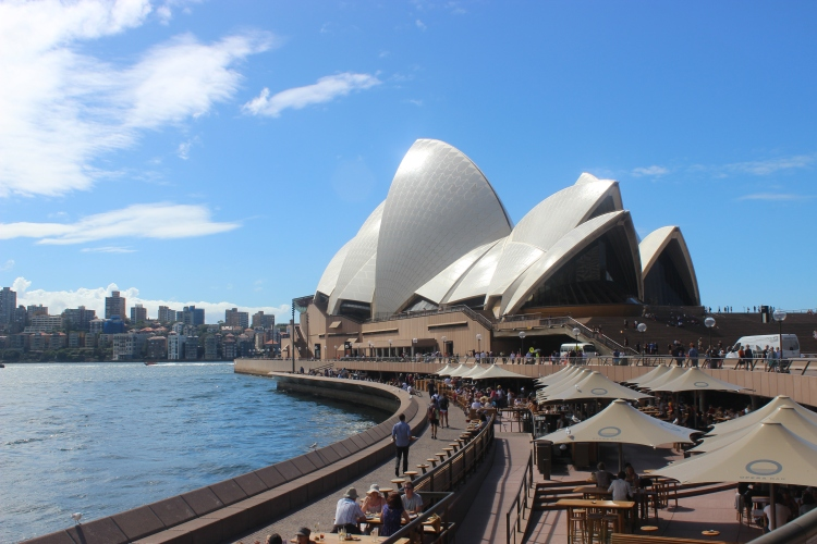 Sydney In A Day