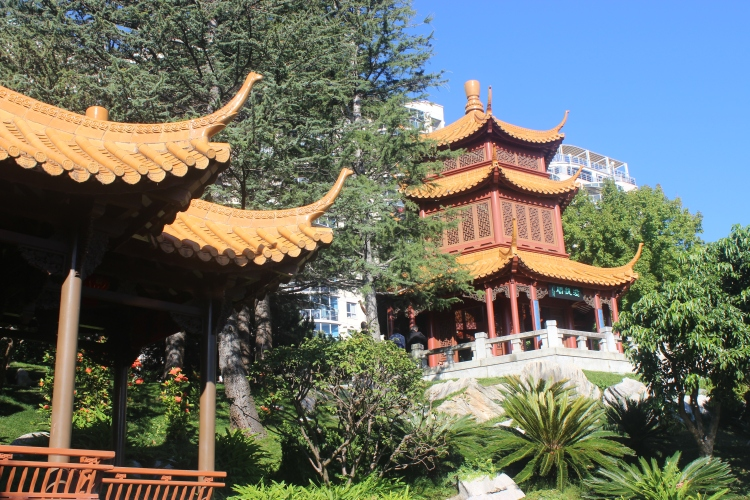 Sydney In A Day Chinese Gardens